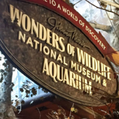 Wonders of Wildlife, painted sign